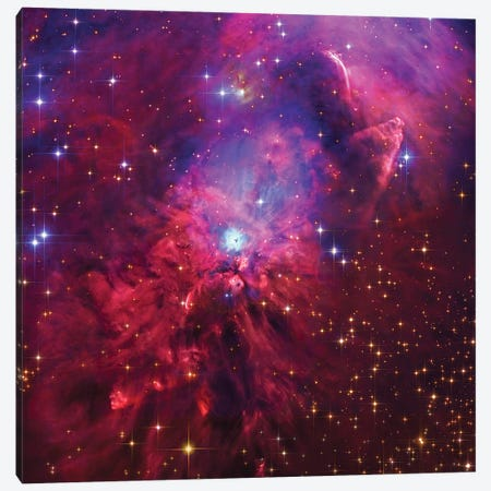 NGC1999, Emission And Reflection Nebulae In Orion Canvas Print #GEN157} by Robert Gendler Canvas Print