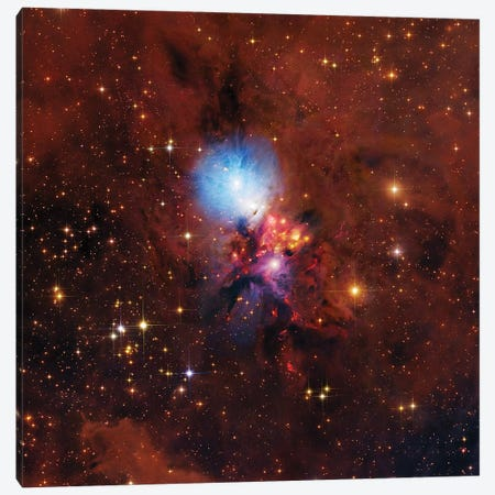 NGC1333, Complex Nebula In Perseus Canvas Print #GEN158} by Robert Gendler Canvas Art