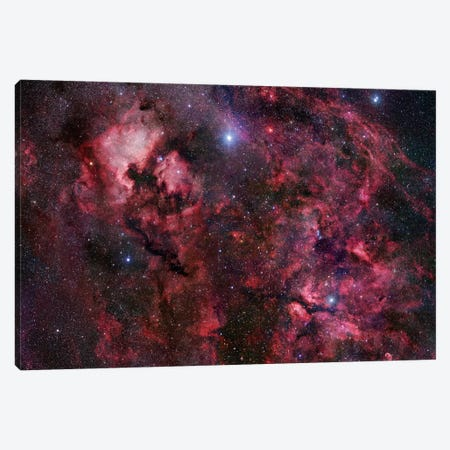 Cygnus Mosaic I Canvas Print #GEN15} by Robert Gendler Canvas Art Print