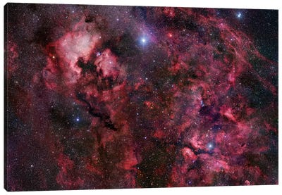 Cygnus Mosaic I Canvas Art Print