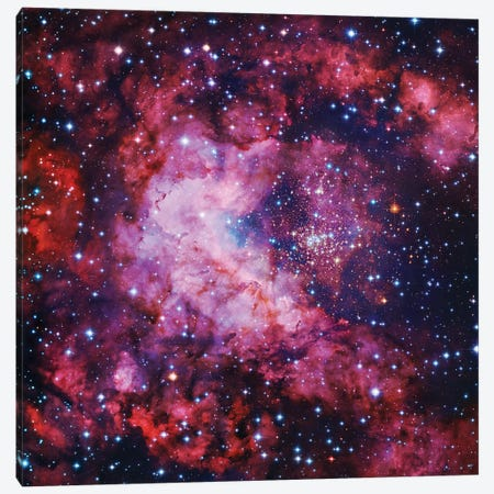 Star Cluster In Carina Canvas Print #GEN161} by Robert Gendler Canvas Art Print