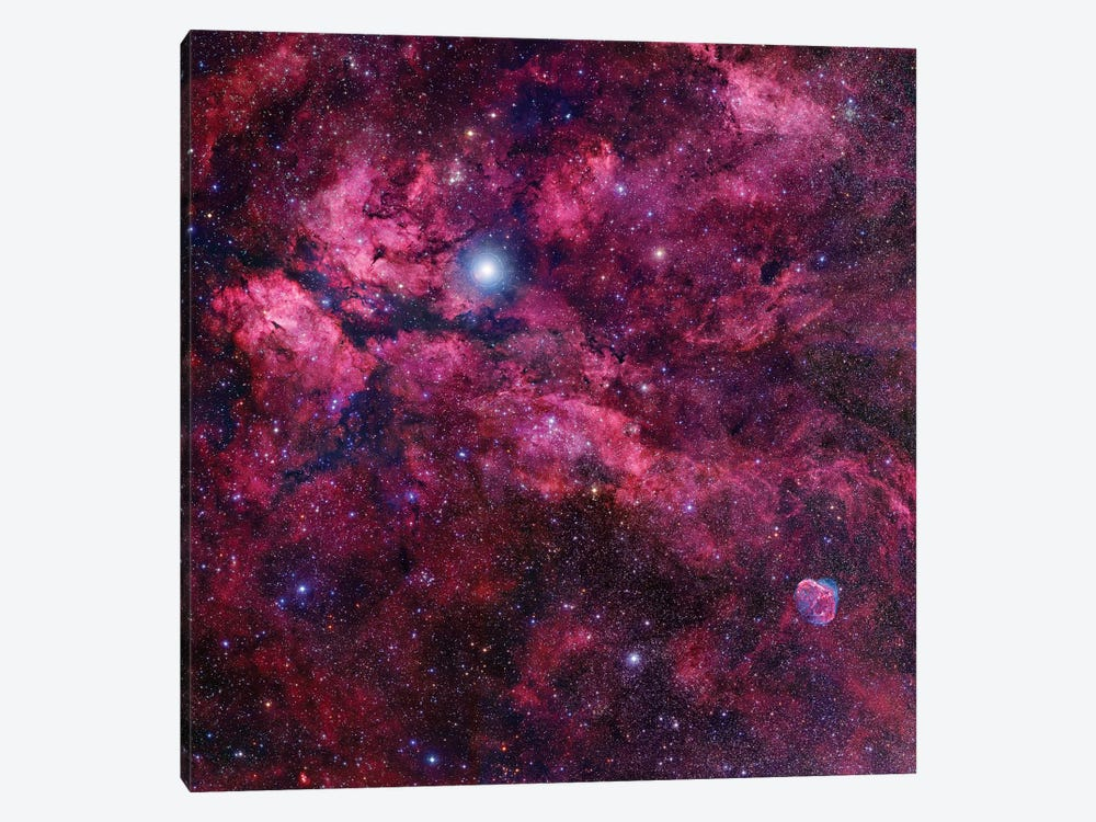 Cygnus Mosaic II by Robert Gendler 1-piece Canvas Art Print