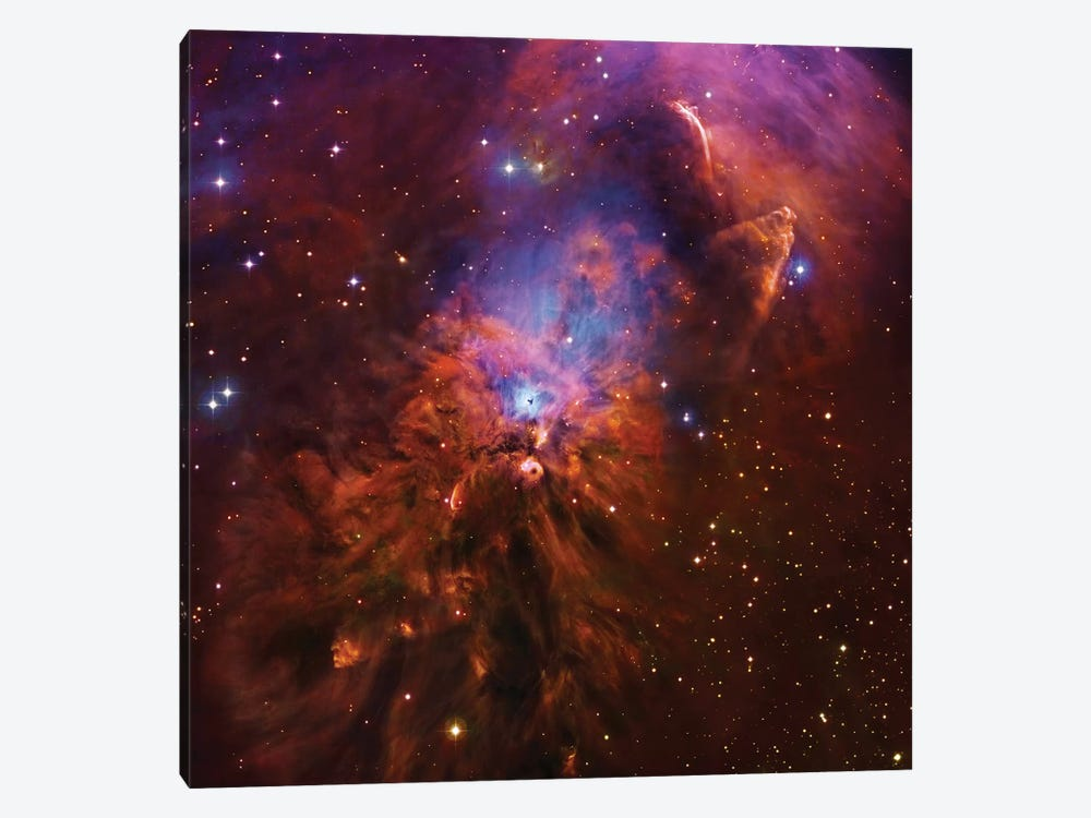 Emission & Reflection Nebula In Orion (NGC 1999) II by Robert Gendler 1-piece Art Print