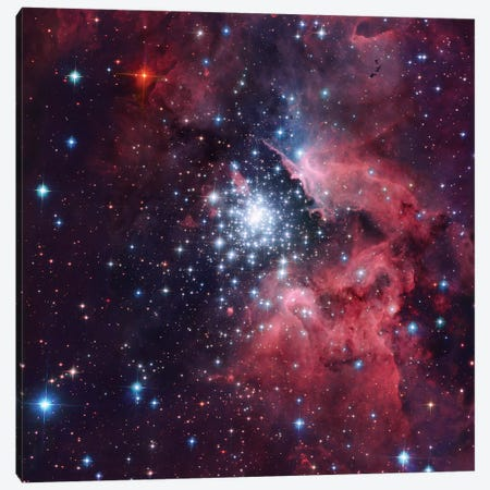 Giant HII Cloud And Its Massive Cluster HD97950 (NGC 3603) Canvas Print #GEN29} by Robert Gendler Canvas Print