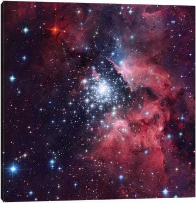 Giant HII Cloud And Its Massive Cluster HD97950 (NGC 3603) Canvas Art Print