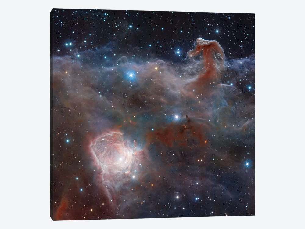 Horsehead Nebula Region In Infrared Light by Robert Gendler 1-piece Canvas Wall Art