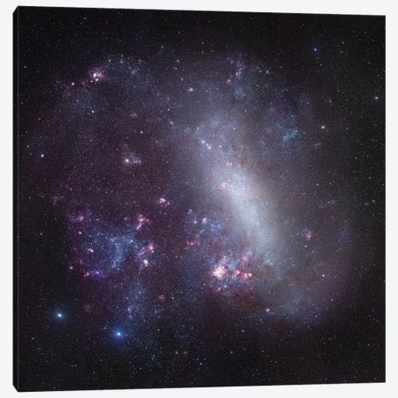 Large Magellanic Cloud Mosaic Canvas Print #GEN34} by Robert Gendler Canvas Art Print