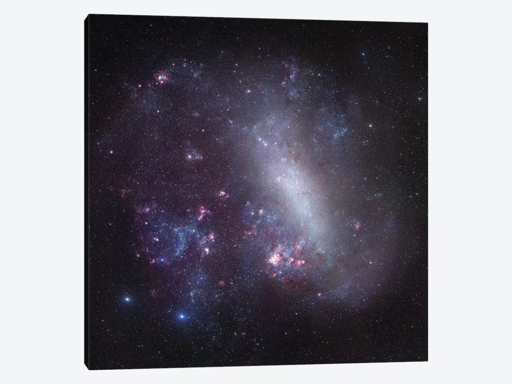 Large Magellanic Cloud Mosaic by Robert Gendler 1-piece Canvas Print