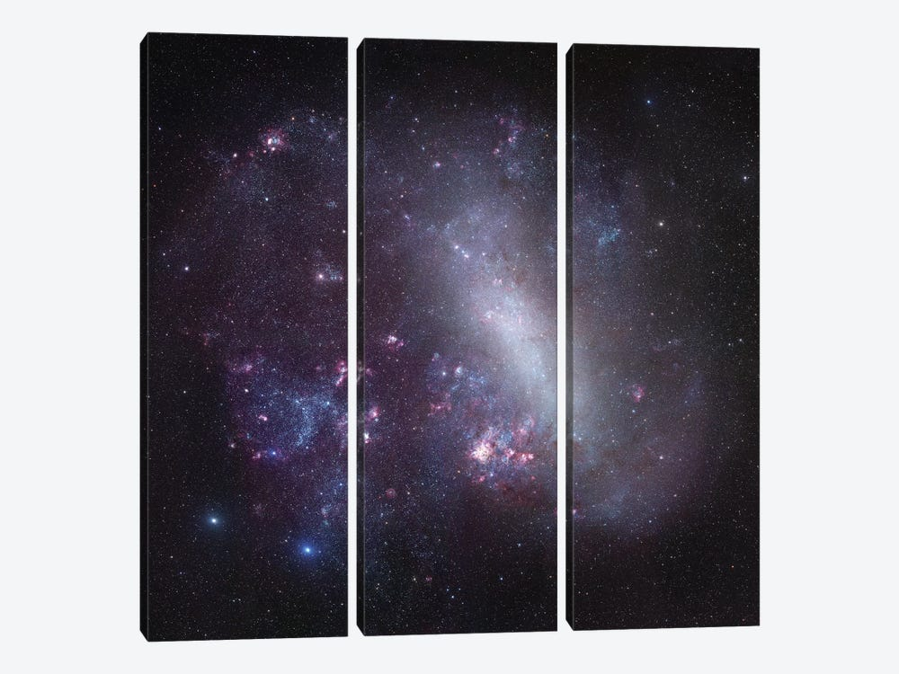 Large Magellanic Cloud Mosaic by Robert Gendler 3-piece Canvas Art Print
