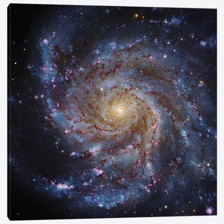 M101, The Pinwheel Galaxy Canvas Print #GEN36} by Robert Gendler Art Print