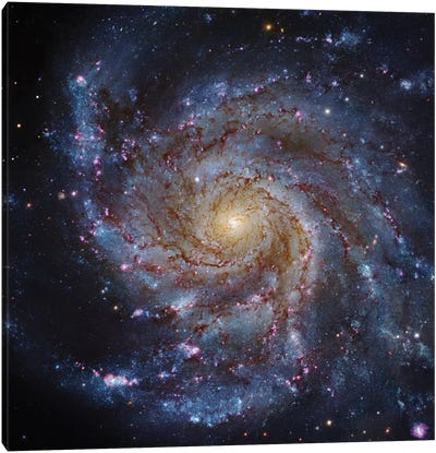 M101, The Pinwheel Galaxy Canvas Art Print