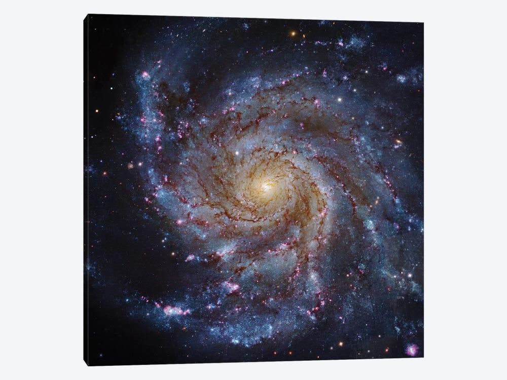 M101, The Pinwheel Galaxy by Robert Gendler 1-piece Canvas Print