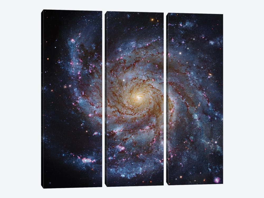 M101, The Pinwheel Galaxy by Robert Gendler 3-piece Art Print