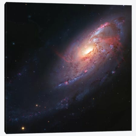 M106, Spiral Galaxy In Canes Venatici I Canvas Print #GEN37} by Robert Gendler Canvas Print