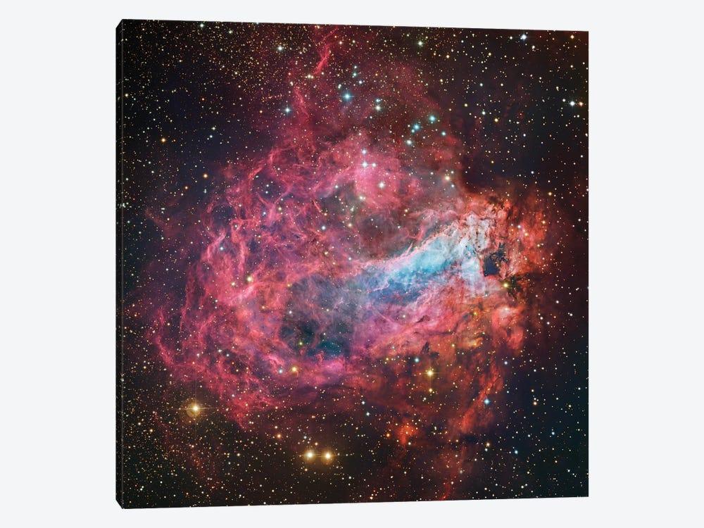 M17, Swan, Omega, Horseshoe, Lobster Nebula (NGC 6618) by Robert Gendler 1-piece Canvas Artwork