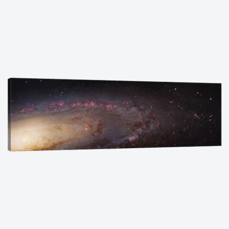 M31, Andromeda Galaxy (PHAT) Mosaic II Canvas Print #GEN47} by Robert Gendler Canvas Artwork