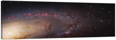 M31, Andromeda Galaxy (PHAT) Mosaic II Canvas Art Print