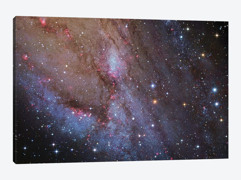 M31, Andromeda Galaxy VI by Robert Gendler 1-piece Canvas Artwork