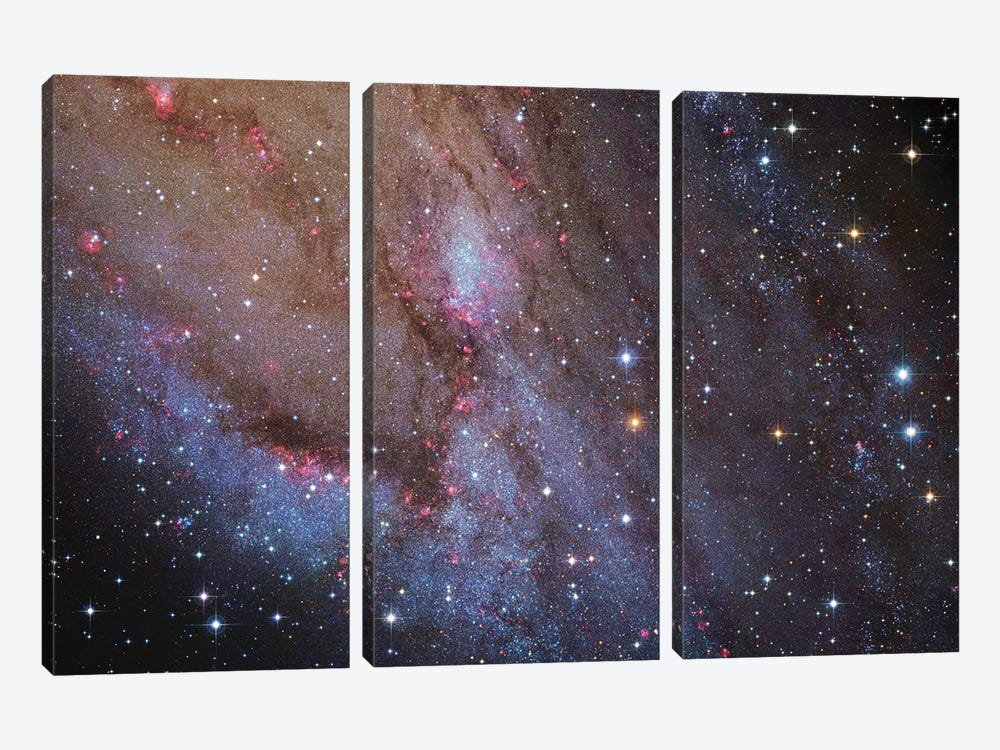 M31, Andromeda Galaxy VI by Robert Gendler 3-piece Canvas Artwork