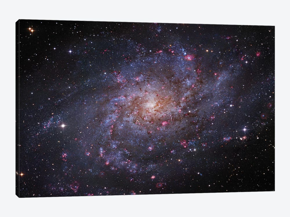 M33, The Triangulum Galaxy by Robert Gendler 1-piece Art Print