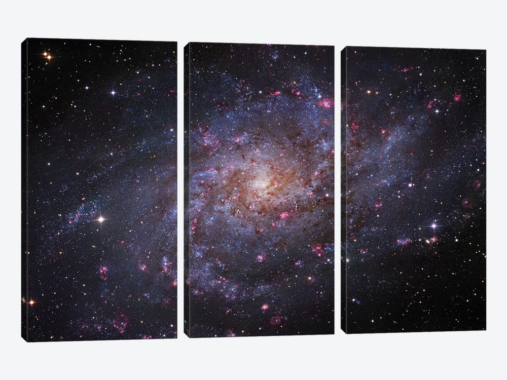 M33, The Triangulum Galaxy by Robert Gendler 3-piece Art Print