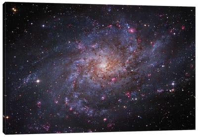 M33, The Triangulum Galaxy Canvas Art Print