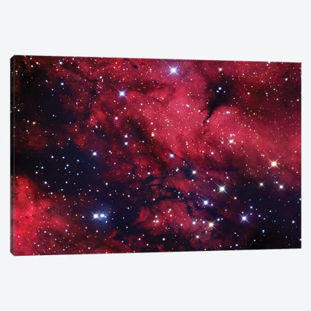 Butterfly Nebula (IC 1318) In Cygnus Mosaic Canvas Print #GEN5} by Robert Gendler Canvas Art