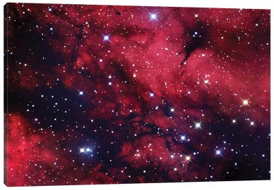 Butterfly Nebula (IC 1318) In Cygnus Mosaic Canvas Art Print