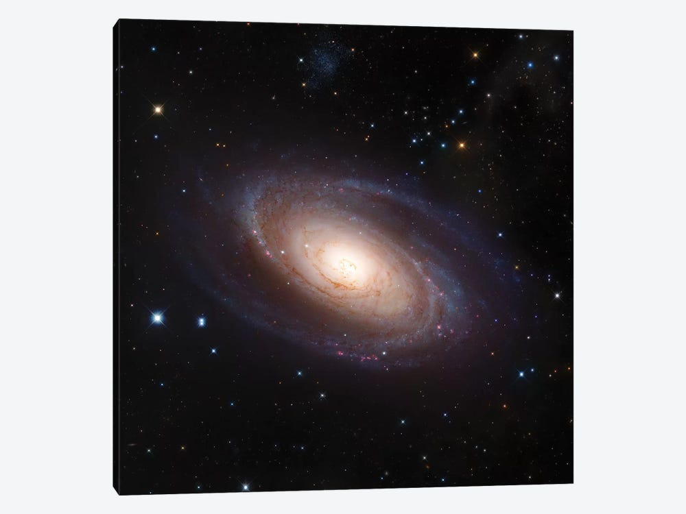 M81, Spiral Galaxy In Ursa Major II by Robert Gendler 1-piece Canvas Artwork