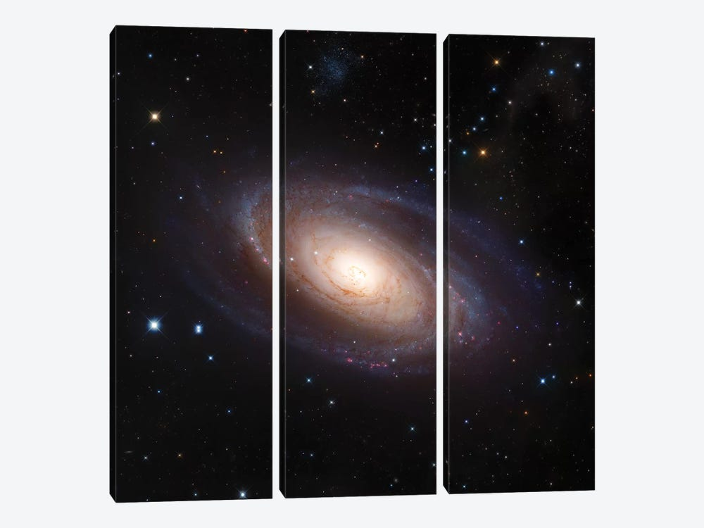 M81, Spiral Galaxy In Ursa Major II by Robert Gendler 3-piece Canvas Artwork