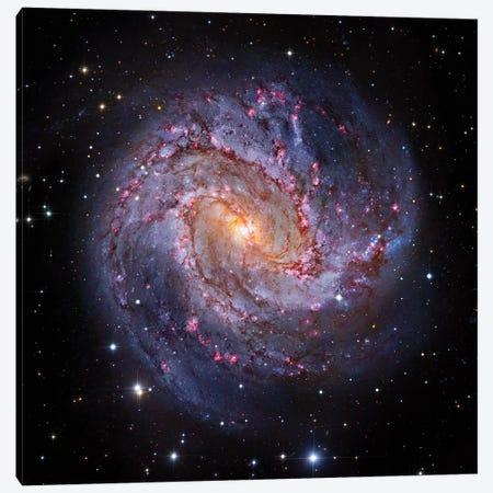 M83, Spiral Galaxy In Hydra I Canvas Print #GEN68} by Robert Gendler Canvas Print