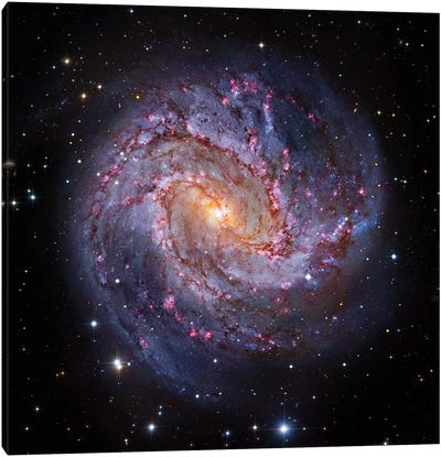 M83, Spiral Galaxy In Hydra I Canvas Art Print