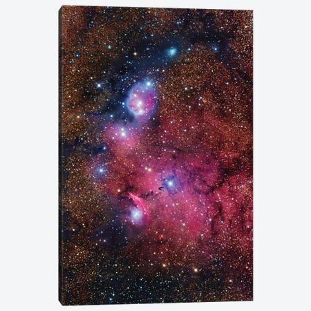 Nebula In Sagittarius (NGC 6559) Canvas Print #GEN73} by Robert Gendler Canvas Art