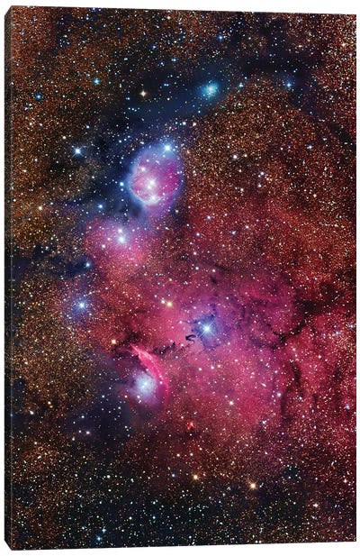 Nebula In Sagittarius (NGC 6559) Canvas Art Print