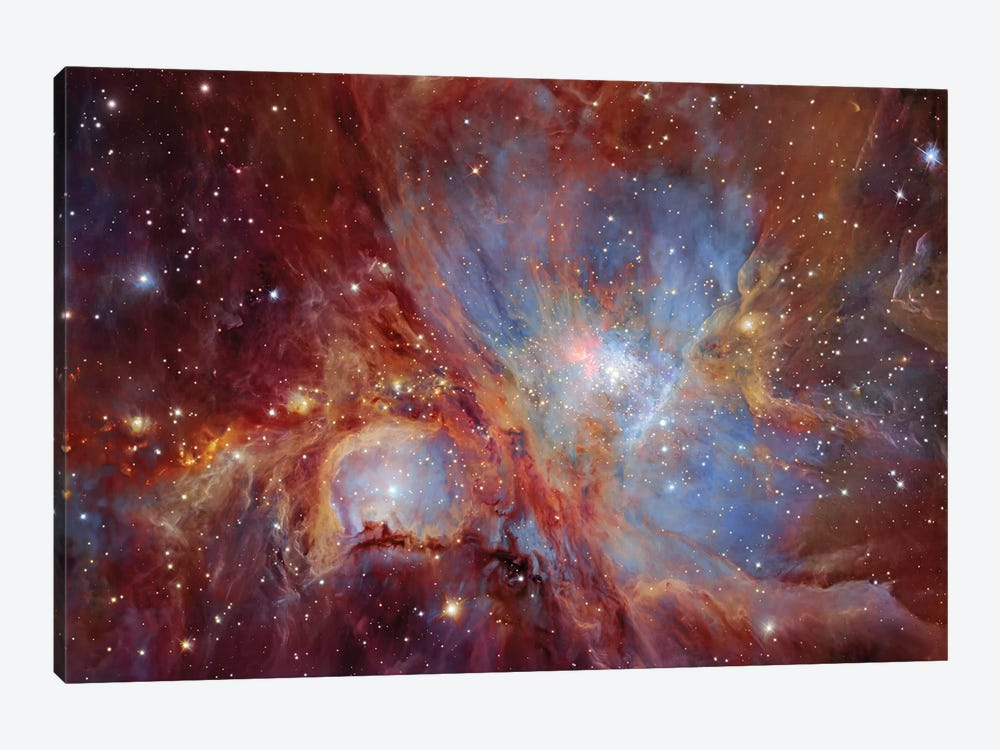 Orion Nebula  by Robert Gendler 1-piece Canvas Art Print
