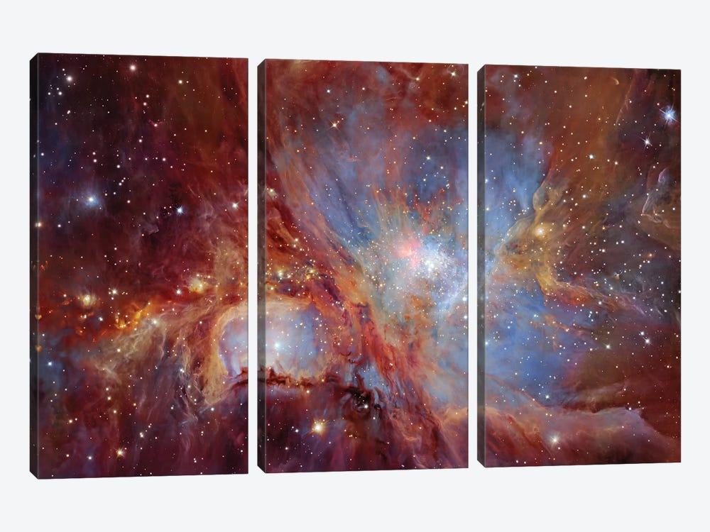 Orion Nebula  by Robert Gendler 3-piece Canvas Print