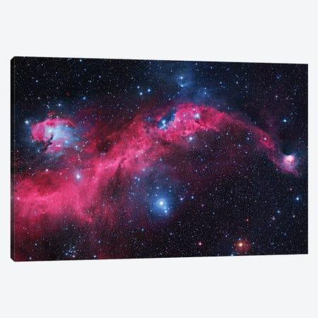 Seagull Nebula (IC 2177) I Canvas Print #GEN82} by Robert Gendler Art Print