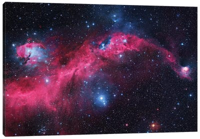Seagull Nebula (IC 2177) I Canvas Art Print