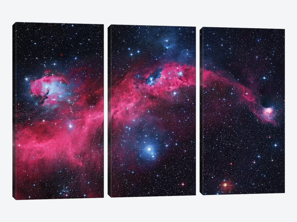 Seagull Nebula (IC 2177) I by Robert Gendler 3-piece Canvas Artwork