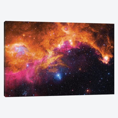 Seagull Nebula (IC 2177) II Canvas Print #GEN83} by Robert Gendler Canvas Print