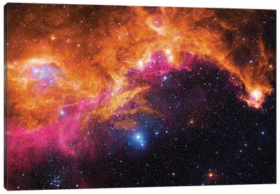 Seagull Nebula (IC 2177) II Canvas Art Print
