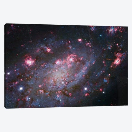 Spiral Galaxy In Camelopardalis (NGC 2403) I Canvas Print #GEN85} by Robert Gendler Canvas Artwork