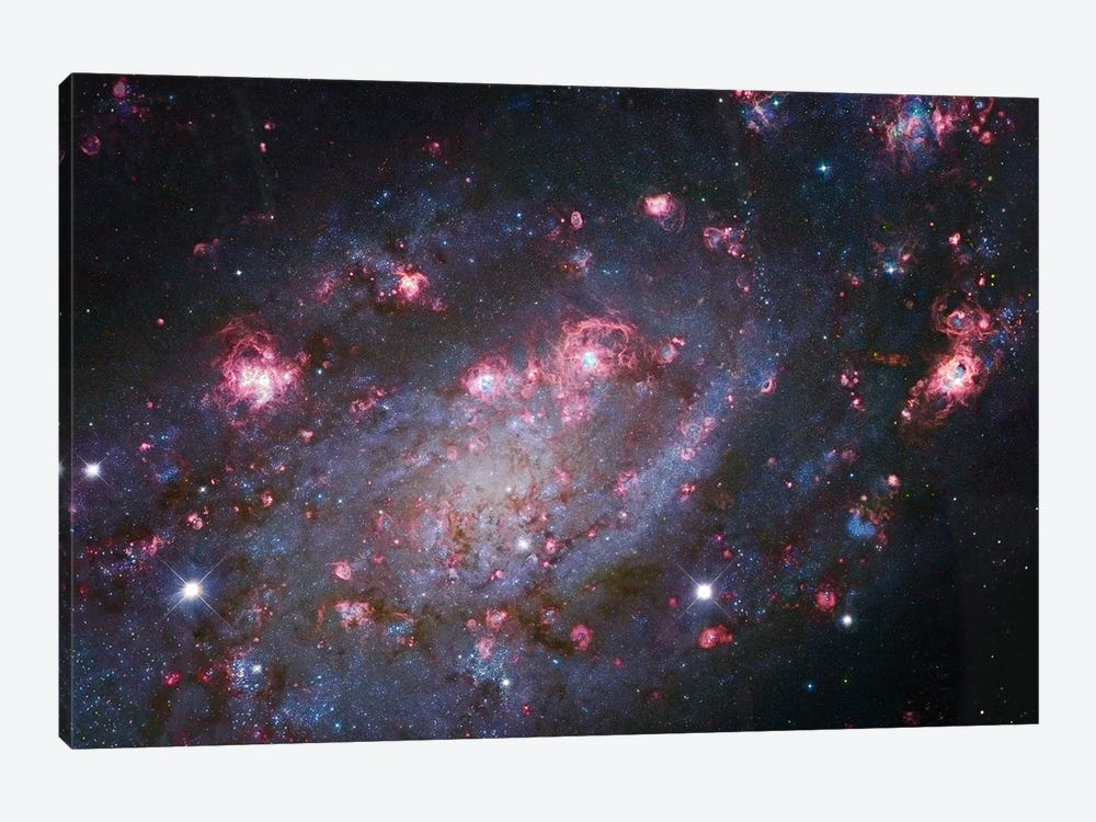 Spiral Galaxy In Camelopardalis (NGC 2403) I by Robert Gendler 1-piece Canvas Art Print