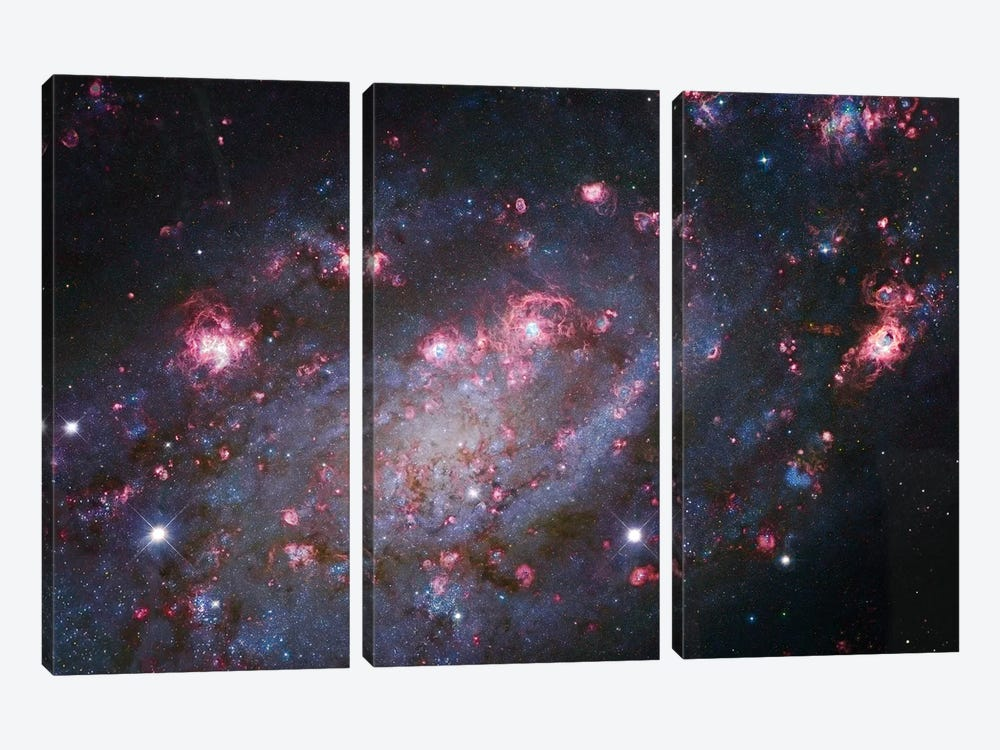 Spiral Galaxy In Camelopardalis (NGC 2403) I by Robert Gendler 3-piece Canvas Art Print