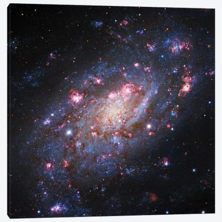 Spiral Galaxy In Camelopardalis (NGC 2403) II Canvas Print #GEN86} by Robert Gendler Canvas Wall Art