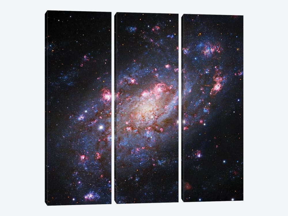 Spiral Galaxy In Camelopardalis (NGC 2403) II by Robert Gendler 3-piece Canvas Art