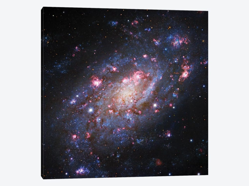 Spiral Galaxy In Camelopardalis (NGC 2403) II by Robert Gendler 1-piece Canvas Art