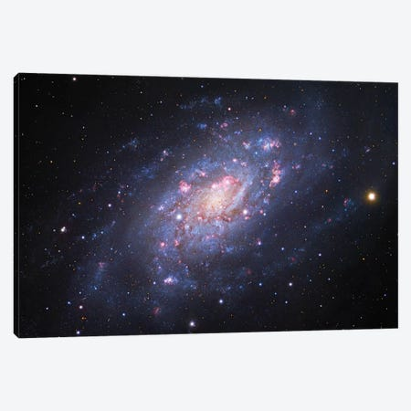 Spiral Galaxy In Camelopardalis (NGC 2403) III Canvas Print #GEN87} by Robert Gendler Canvas Art