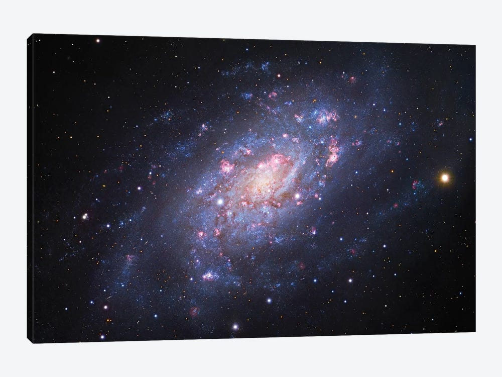 Spiral Galaxy In Camelopardalis (NGC 2403) III by Robert Gendler 1-piece Canvas Art Print