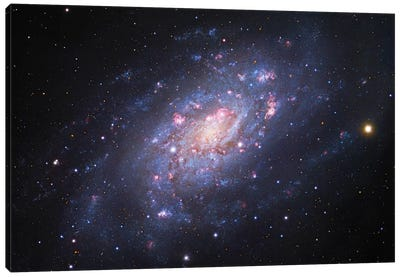 Spiral Galaxy In Camelopardalis (NGC 2403) III Canvas Art Print